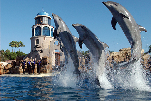 San Diego Attractions